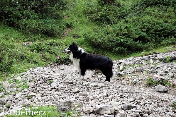 Aufstieg zur Karlsbaderhütte