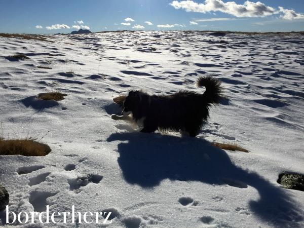 Glen sucht nach dem Geocache