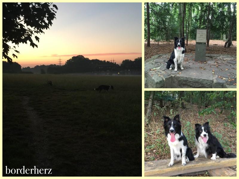 Auf unserem Feld, im Duisburger Wald und in Vonderort