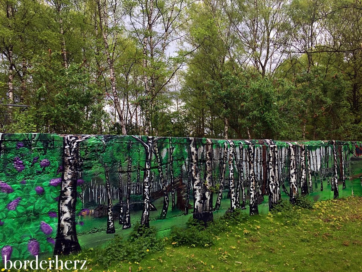 Birkenwald im Gleispark Frintrop