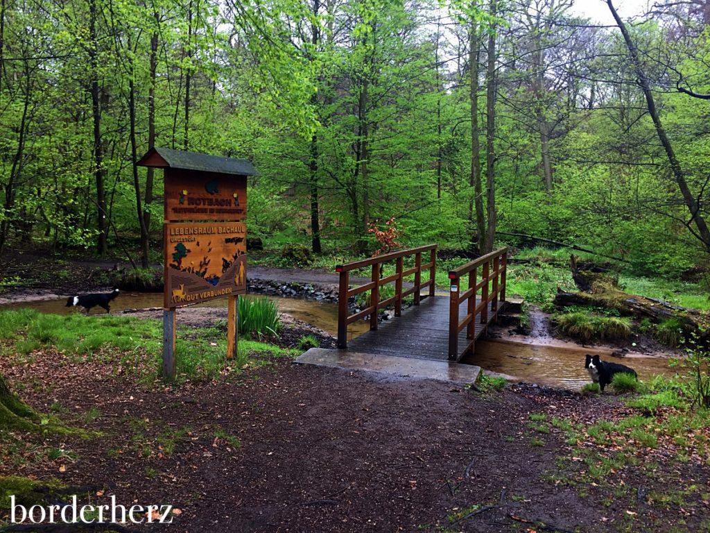 Brücke über den Rotbach