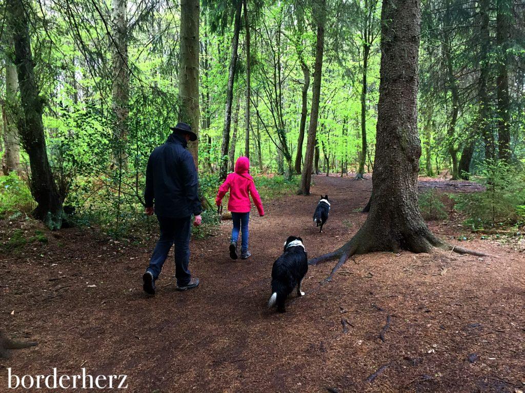 Wandern im Rotbachtal