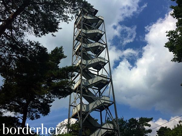 Feuerwachturm Farnberg