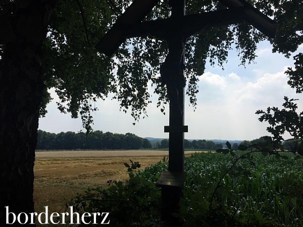 Ausblick über die Felder