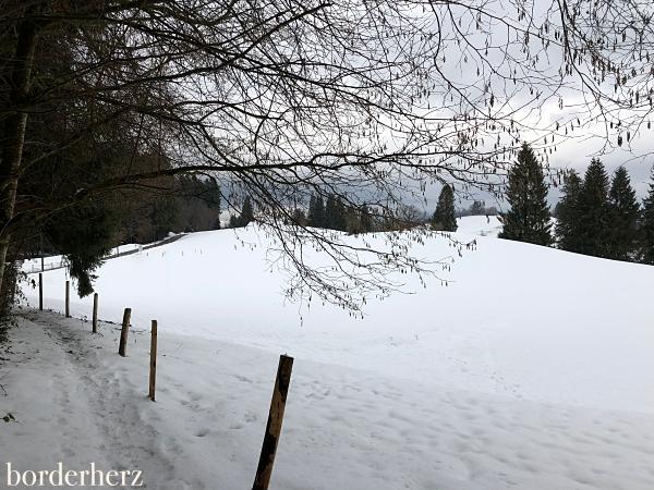 Scheidegg Winter