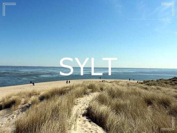 Region Header Sylt neu