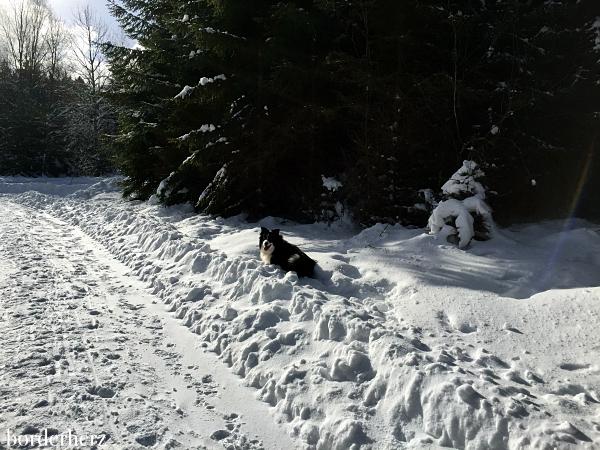Winterwandern Winterberg