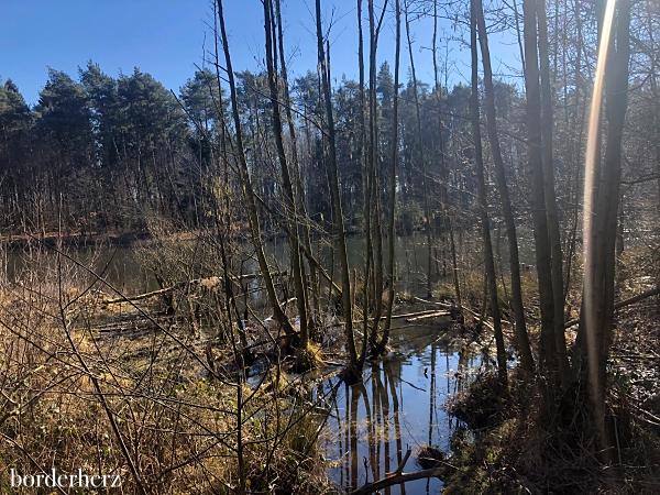 Wandern Kirchheller Heide