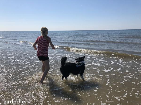 Amrum mit Kind und Hund