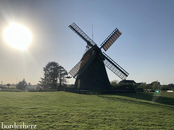 Mühle Nebel