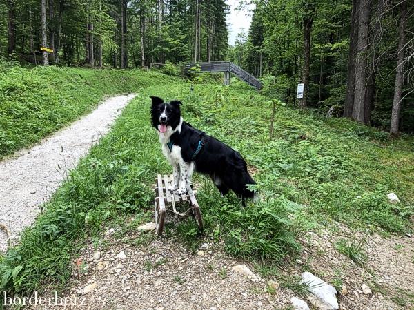 Sommer Garmisch-Partenkirchen