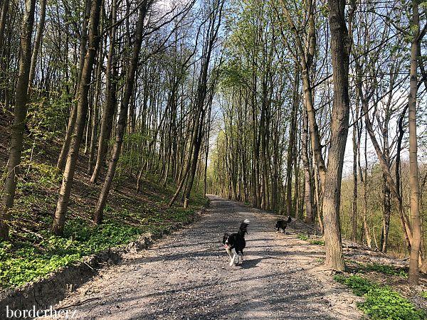 Wandern im Ruhrgebiet