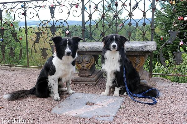 Urlaub mit Hund im Sauerland