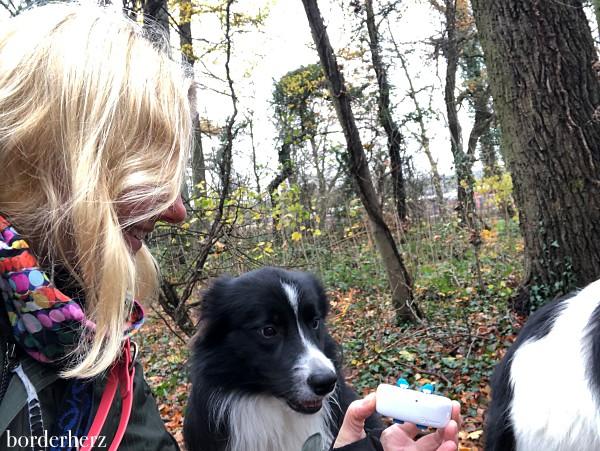 GPS Ortung Hund
