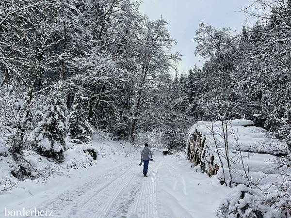 Winterwandern im Sauerland Bödefeld