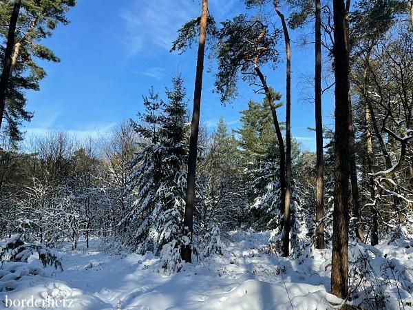 Winterwandern Ruhrgebiet