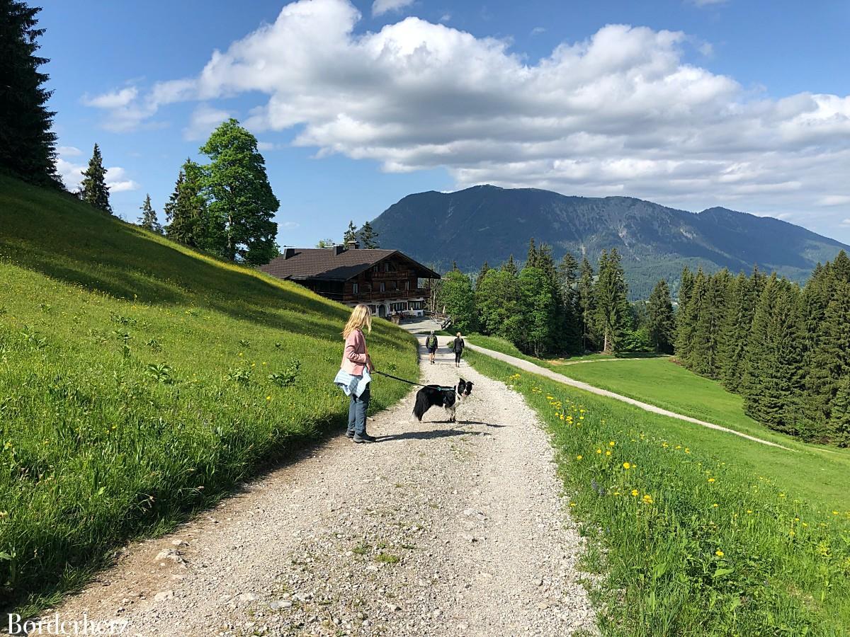 schönste wanderwege deutschlands mit hund