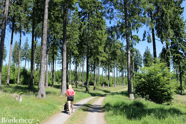 Wittgensteiner Panoramaweg